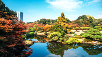 Which Are A Few Of The Best Parks To Visit In Tokyo?