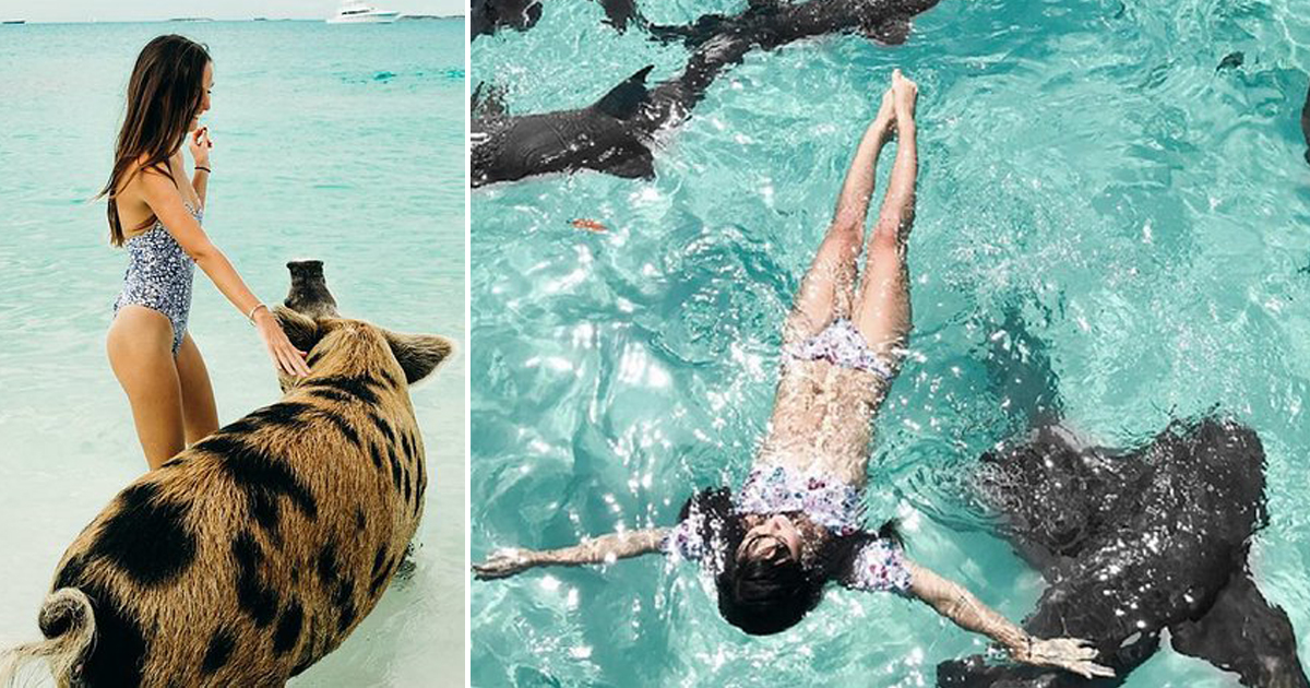 Things To Do In The Bahamas: A Great Way To Spend A Day On The Island