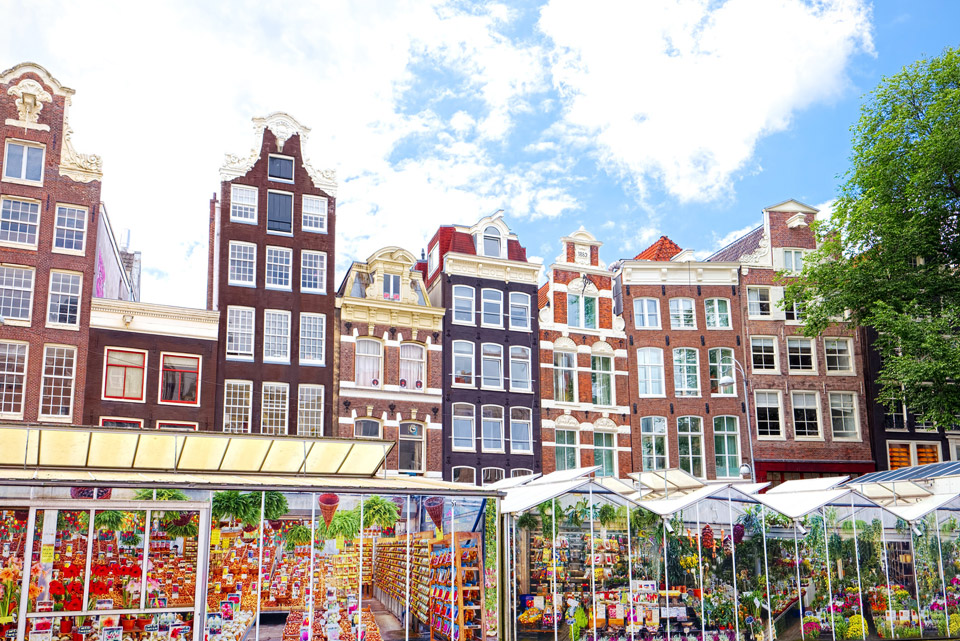 Bloemenmarket - the flower market