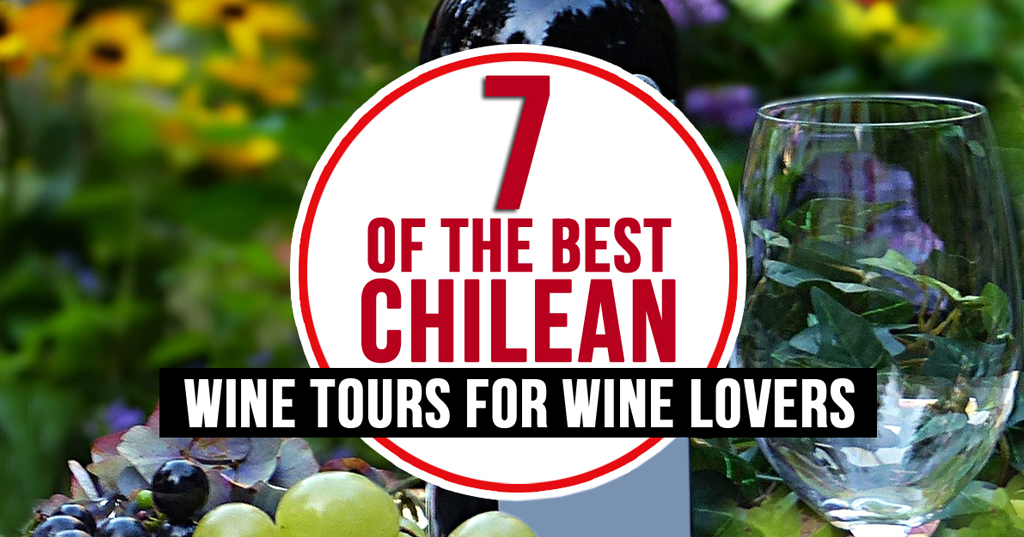 7 Of The Best Chilean Wine Tours For Wine Lovers