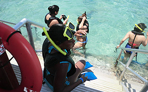 Snorkeling at De Palm Island Aruba